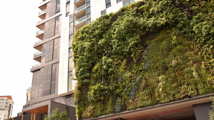Botanica's green wall is thriving.