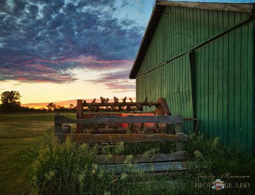 Manure Spreader Sunset