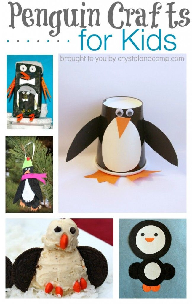 preschool penguin songs 17 best images about classroom theme artic animals on 195