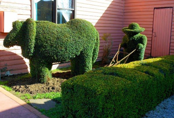 Railton, Town of Topiary in the north west coast region of Tasmania.  Article & photo by Michelle Kneipp Pegler.