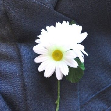 White Daisy Buttonhole - Buttonholes  Corsages. Just simple, with a sprig of fern behind.