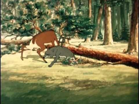 Олень и волк. Мультфильм, СССР, 1950 год. - YouTube