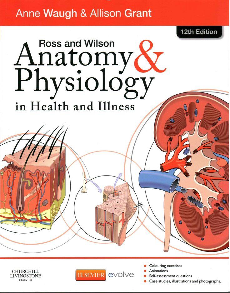 Großzügig Mcgraw Hill Anatomie Und Physiologie Animationen Fotos ...
