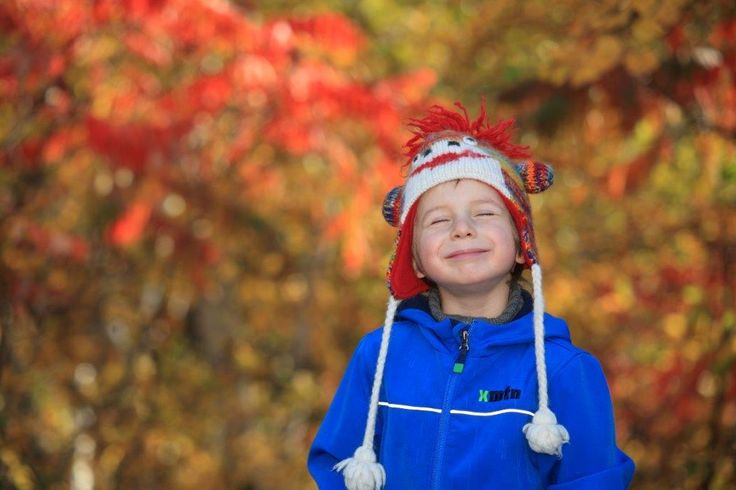 Prévoyez venir voir nos couleurs cet autome et profiter de nos grands espaces! #automne #SagLac #Quebec #pleinair
