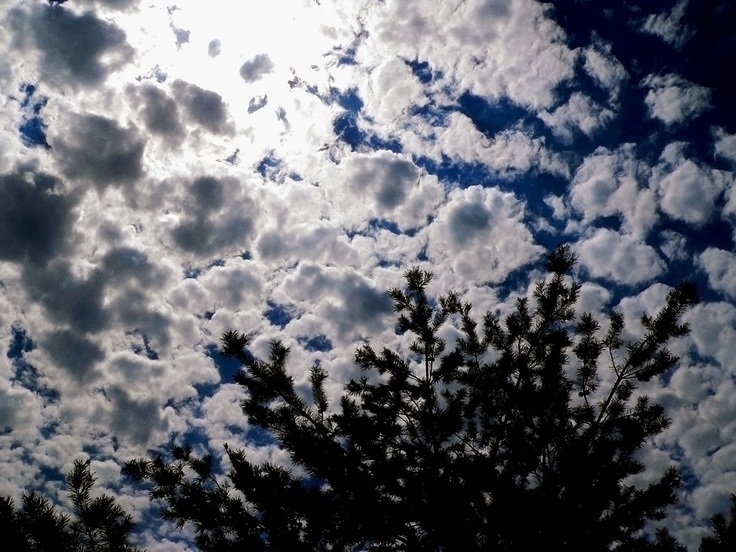 Sky and white clouds