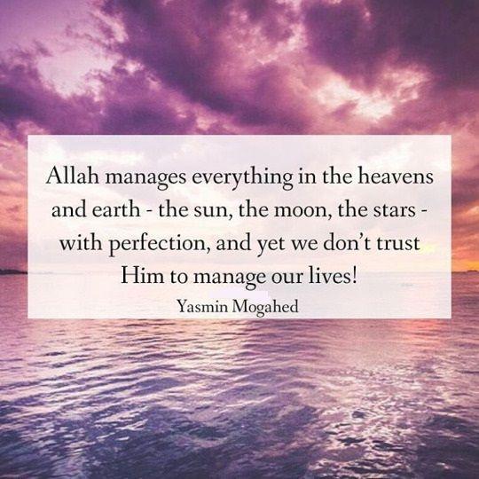Trust In Islam Quotes: 812 Best Islam Images On Pinterest