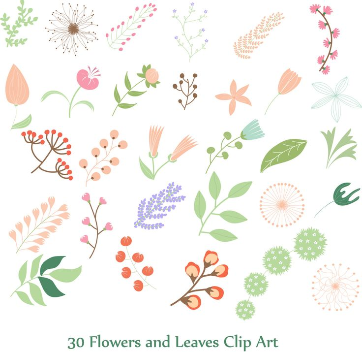 Flowers and lraves Clip Art by Orangepencil on Etsy