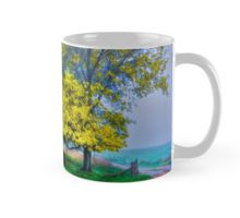 Golden Acacia Wattle Tree in Full Bloom Mug