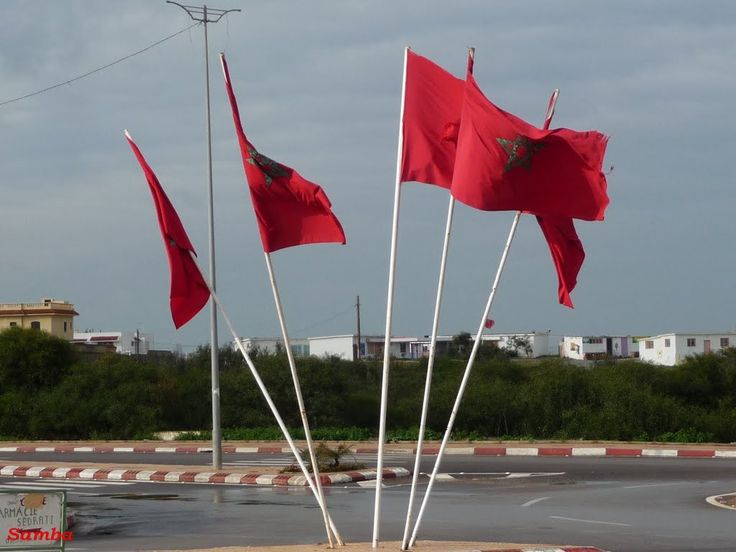 Harhoura, Flags 1 - Samba 2011