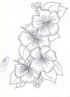 Best 25 Hawaiian Flower Drawing Ideas On Pinterest