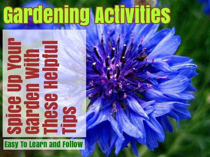 Growing An Organic Garden: Tips And Tricks – Gardening Ideas