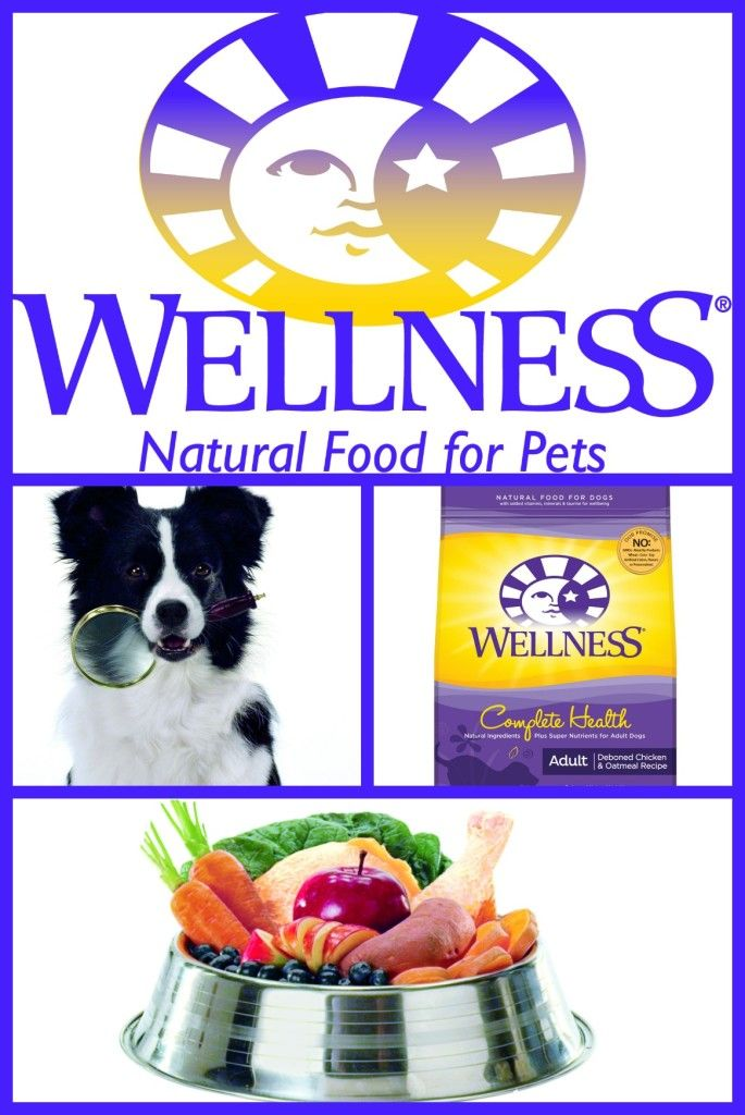 Wellness Natural Pet Food Television Commercial