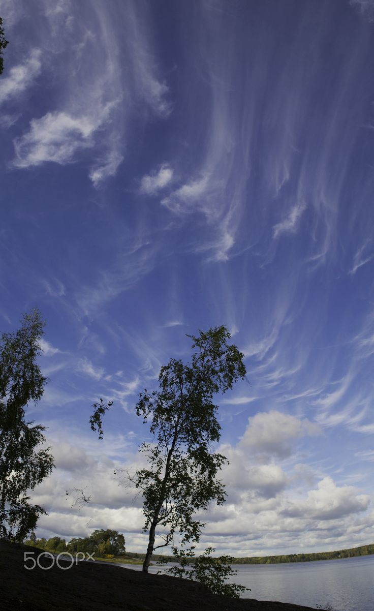 """Sky in the Vyborg - Clouds - """"painted"""" by the light brush strokes of artist-nature"""
