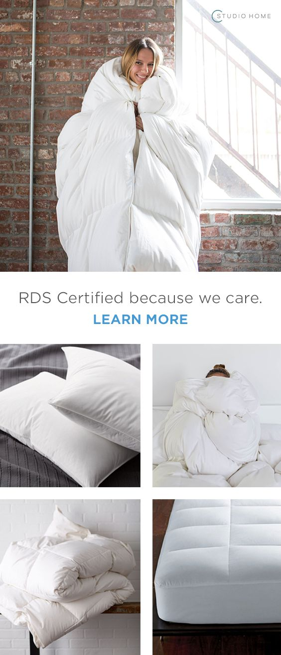 It's official: Your bed basics are limp and lifeless. Refresh your room with a solid foundation for years to come at Cstudio Home. You'll find a variety of RDS-certified plush basics to help build your bed from the ground up. Choose from premium down or synthetic fill, most handmade in the USA.