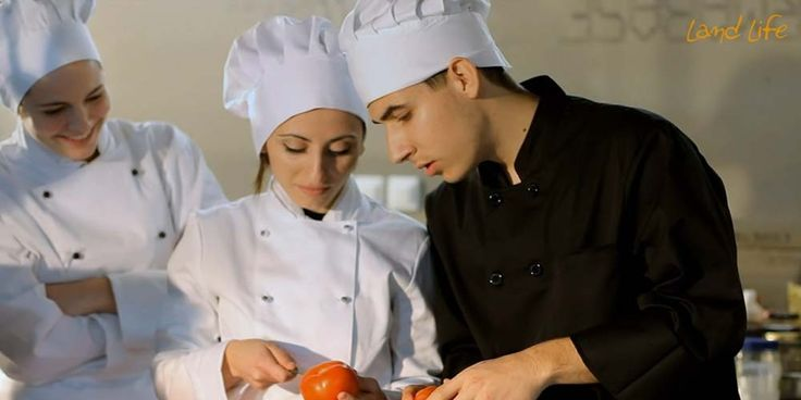 Cooking lessons of Greek cusine