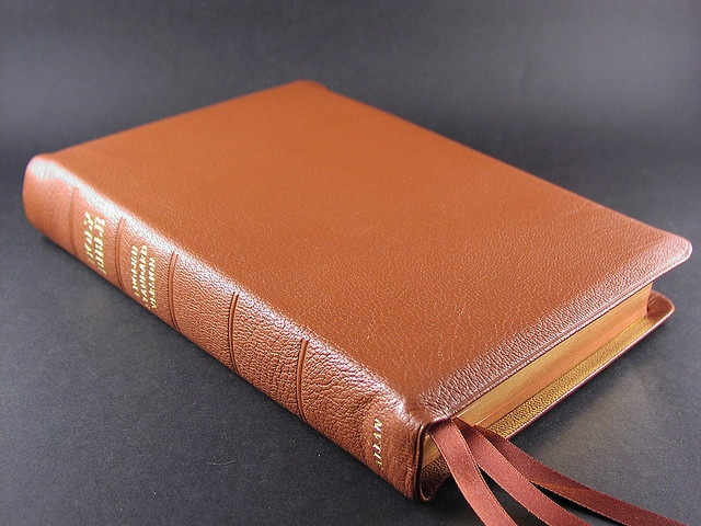 12 Best Images About Allan Bibles On Pinterest Shops