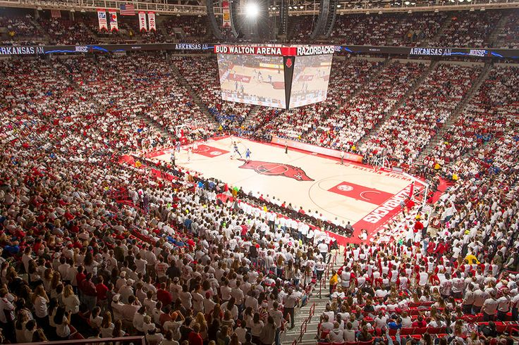 Hannahs became the third Razorback in school history to score at least 30 points in an SEC Tournament game. Description from arkansasrazorbacks.com. I searched for this on bing.com/images