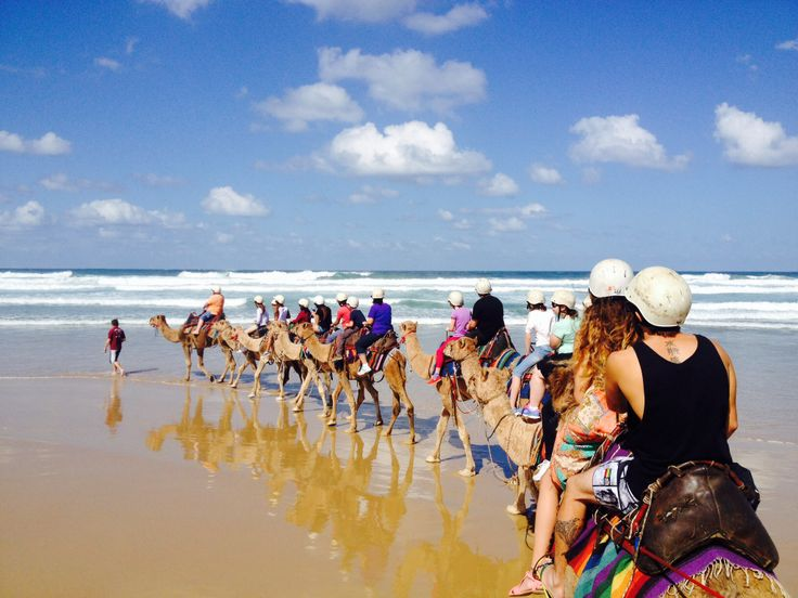 Nelson Bay NSW on a camel ride