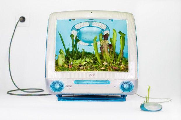 """""""Plant your Mac!"""" Monsieur Plant  écran Mac pot de fleur"""