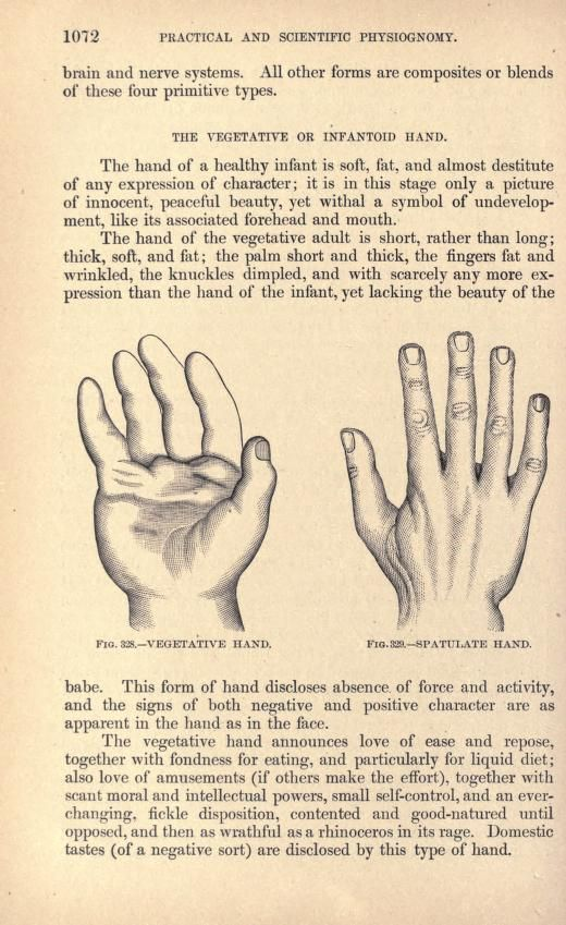The 91 best palmistry images on pinterest celebs famous people a system of practical and scientific physiognomy or how to read faces m4hsunfo