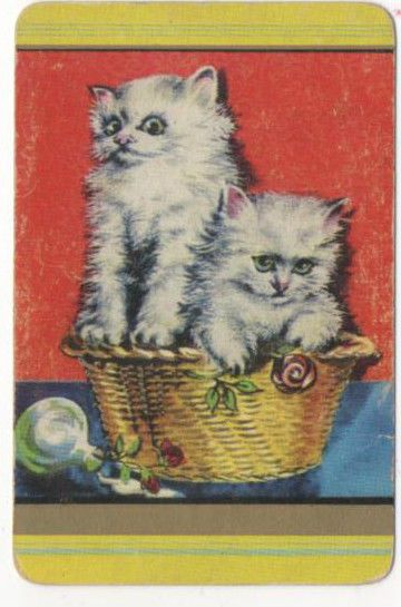 Plain Back 1950 s Coles Card = 1 Playing Swap Cards Cats  *A203