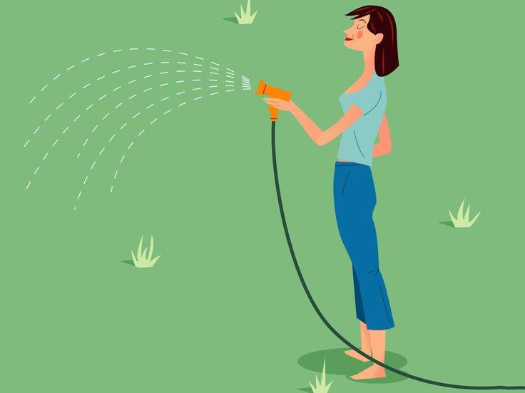 Richtig gießen im Sommer - das müsst ihr wissen