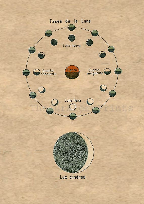 Moon Phases and Earthshine Astronomy Print to by TheCuratorsPrints, $22.00