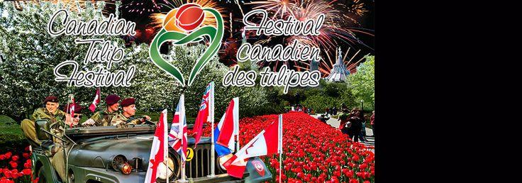 Festival canadien de tulipes, Ottawa