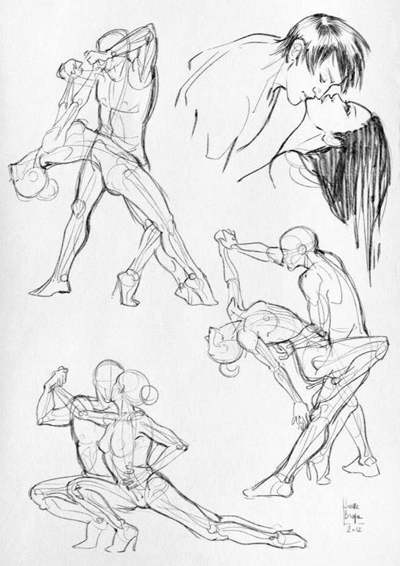 Laura Braga Anatomical studies