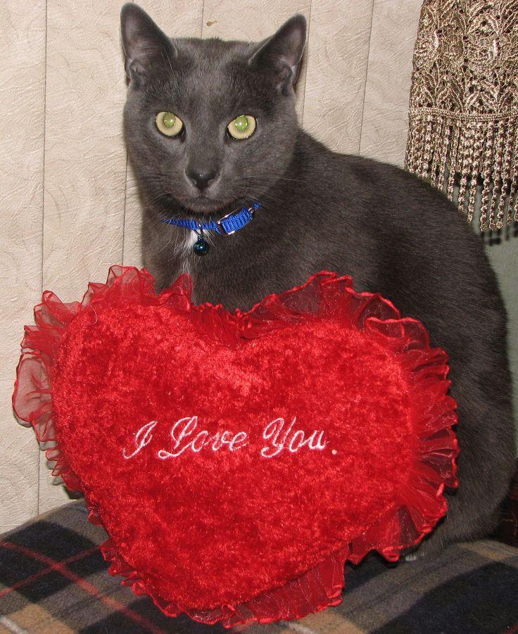 valentine week name