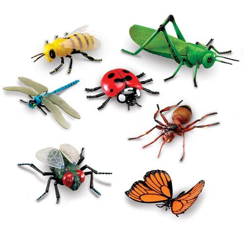 Ant Farms For Kids Toys R Us