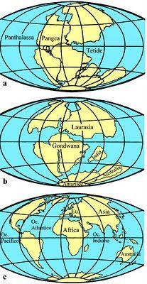 Ecco qui una mappa di sintesi delle prime quattro ere geologiche: dal Big Bang all'estinzione dei dinosauri (lucertole terribili) LE...