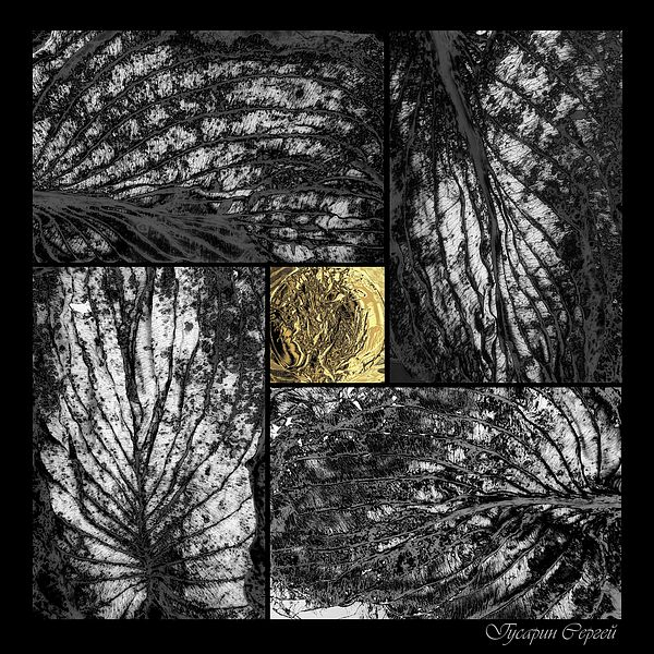 DRY LEAVES. PHOTO ART by SERGEY GUSARIN.   Belongs to the Gallery RUSSIAN ARTISTS NEW WAVE.  Abstract photo art with black-golded-silver textures in square format.  Limited edition of 20 Giclee prints 115 x 115 sm. #RussianArtistsNewWave #ArtPhotography #LimitedEdition #ArtForSale #SergeyGusarin #PhotoArt  #InteriorDesign #ArtForHome #SquareFormat