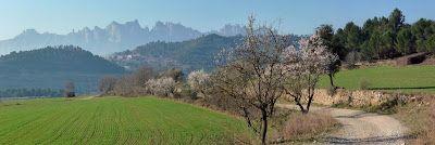 Zinaztli. Cicloturismo de montaña con alforjas: Camino Catalán-Ebro 06. Manresa-Montserrat