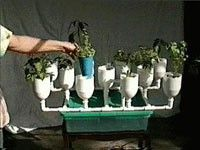 Hydroponics Online:  DIY Hydro-garden... In the tank portion put fish, this would increase usablility and what can be grown.