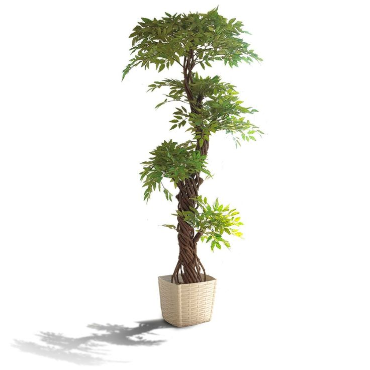 Faux Contemporary Artificial Plants and Trees, Luxury Japanese Fruticosa Tree