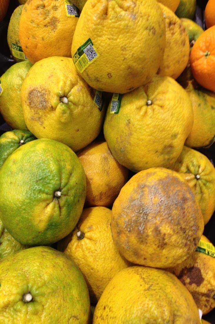 Güzellik Anlayısımız Meyve ve Sebzedeki Seçimimizi Bile Etkiliyor - www.ajansoran.com