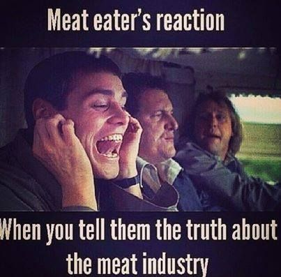 why you shouldnt eat meat Eight arguments in favor of eating meat and objections  does this defeat the arguments that we shouldn't eat meat, in  why not three, etc until you argue.