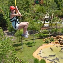 Buy discount tickets online toScreamin' Gator zip line at Gatorland in Orlando,Florida. Reserve Orlando has the best ticket prices to all Orlando & Kissimmee area attractions and parks.