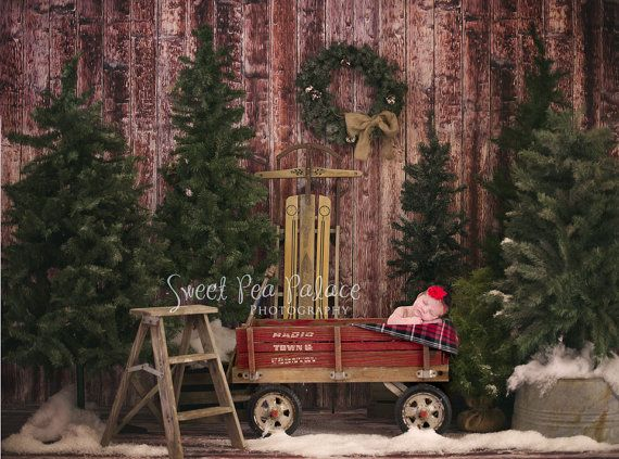 1000 Images About Christmas Backdrop Ideas On Pinterest