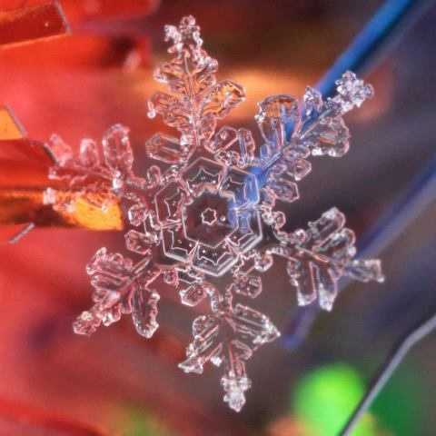 (91) Real Snowflake Photography by Karla Jean Booth