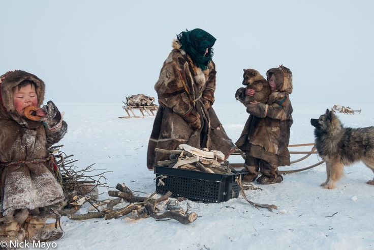 A Siberian Arctic Nenets family, the children wearing traditional malitsas and kisy and their grandmother a yagushka, about to bring in firewood accompanied by their dogs on the Yamal peninsula. Photography by Nick Mayo.