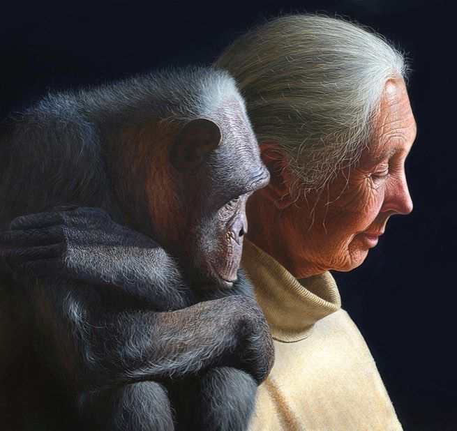 'The drop' by Gerd Bannuscher Germany. He works as a realistic visionary painter. For many years Bannuscher dealt intensively with the question of the connection between primate and human. Since his acquaintance of ethologist Dr. Jane Goodall in 2013 Bannuscher committed to projects of the Jane Goodall Institute to conserve the habitats of great apes. 'Падение' картина художника Герда Баннушера Германия. Герд работает на стыке реализма и фантазии. В течение многих лет он интенсивно…