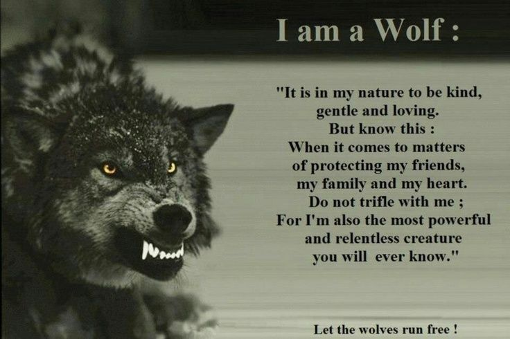 "I am a wolf: ""It is in my nature to be kind, gentle and loving. But know this: When it comes to matters of protecting my friends, my family and my heart.  Do not trifle with me; For I'm also the most powerful and relentless creature you will ever know."""