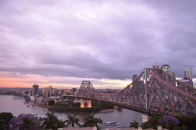 Purple in Brisbane, via Flickr.
