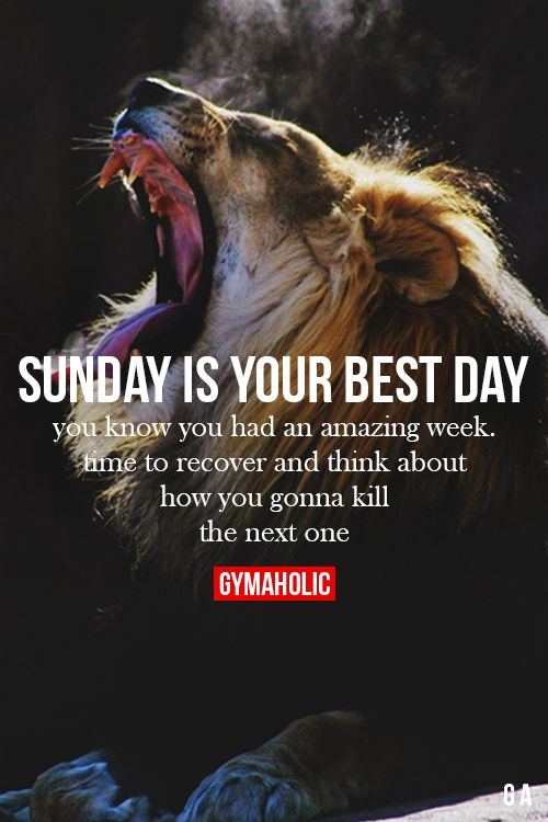 Sunday Is Your Best Day Fitness Revolution -> http://www.gymaholic.co/ #fit #fitness #fitblr #fitspo #motivation #gym #gymaholic #workouts #nutrition #supplements #muscles #healthy