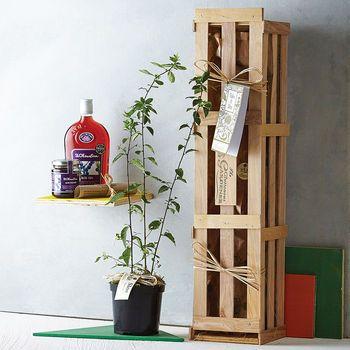 Take It Sloe Gift Crate