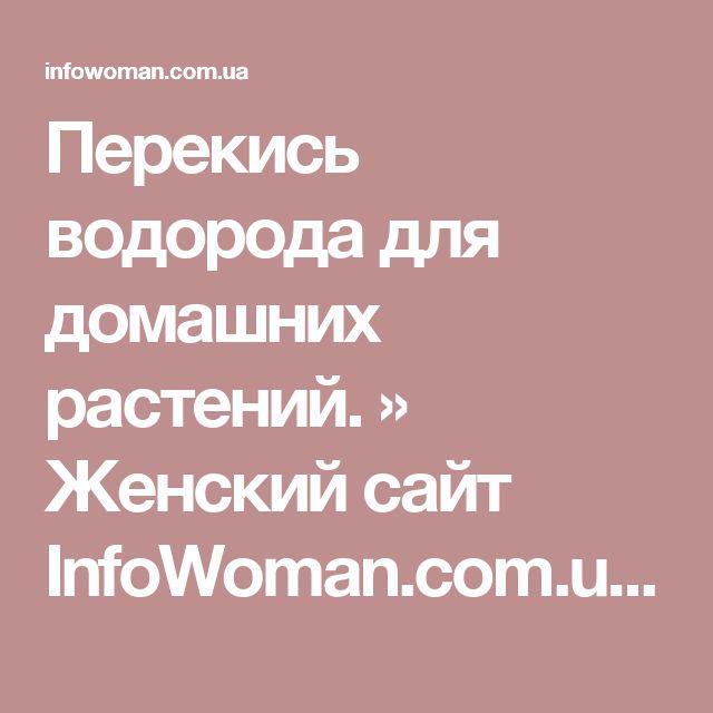 Перекись водорода для домашних растений. » Женский сайт InfoWoman.com.ua. Полезные советы для женщин
