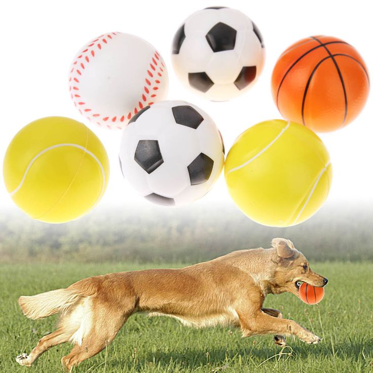 6 Pcs Cute  Pets Dog FootBall Toys Funny Puzzle Pet Dogs Puppy Chew Training Toys Pets Food Container BasketBall #Affiliate