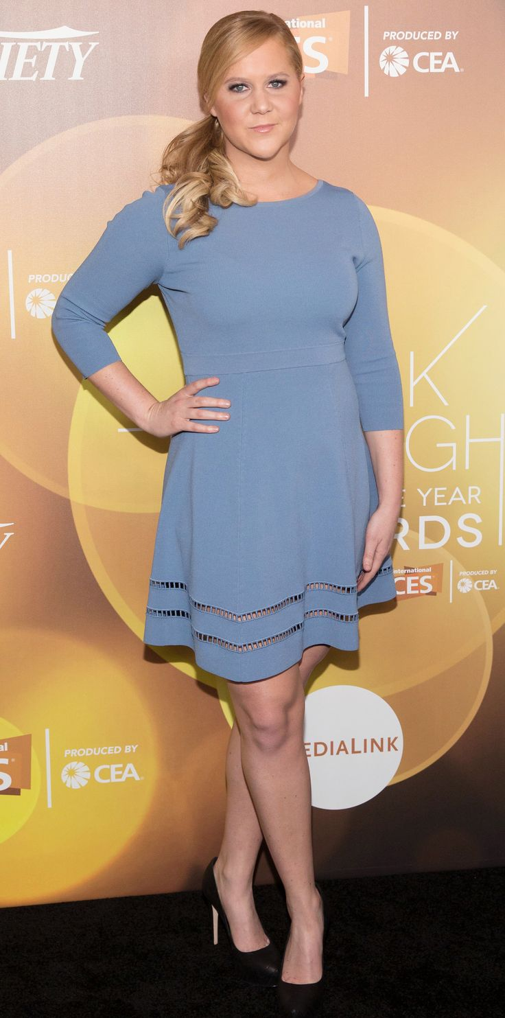 Amy Schumer's Best Red Carpet Looks - In a Dusty Blue Frock, 2014  - from InStyle.com